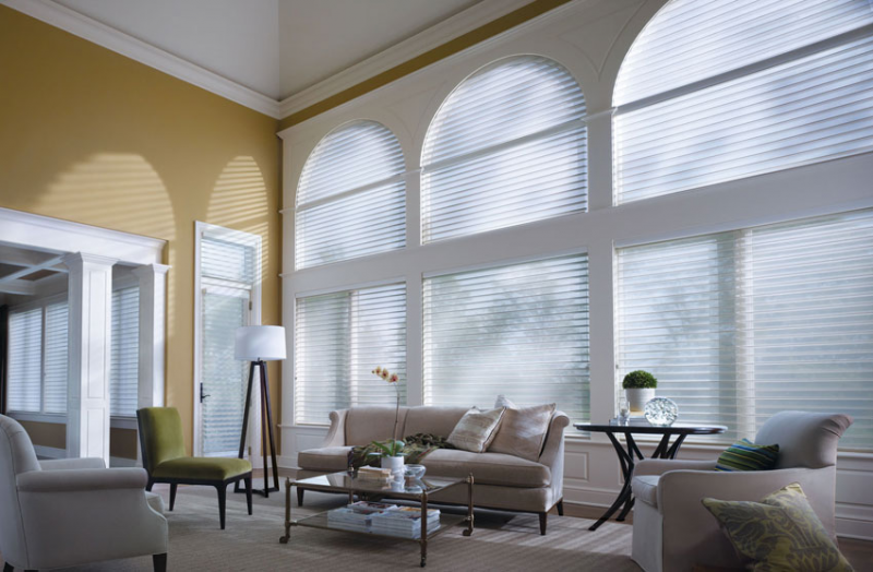 Blinds shades gary interiors window treatments for Motorized shades for arched windows